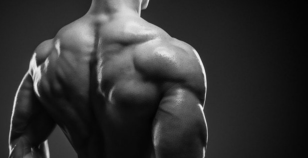 Does a Muscle Pump Mean Muscle Growth?